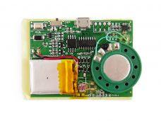 Greeting Card Module 8Mb Memory